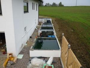 baubericht quarantaenehaus P1030345